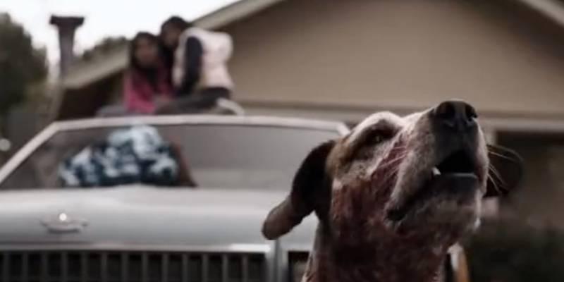 Название сериала, где собака охраняет детей, сидящих на машине.